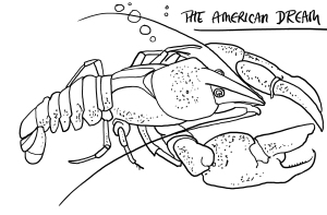 SignalCrayfish1