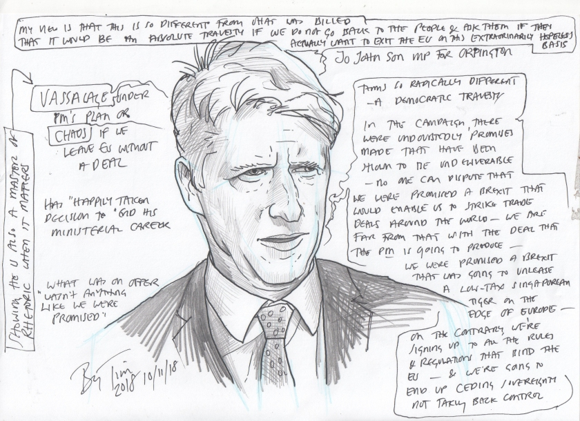 jo johnson resigning by tim.jpg